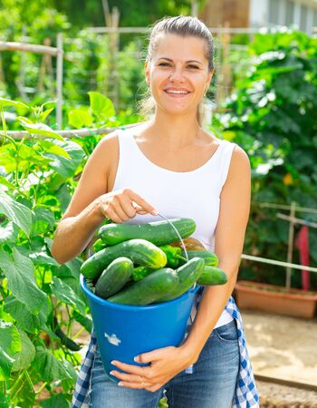 Satisfied woman a harvest of ripe cucumbers Imagens
