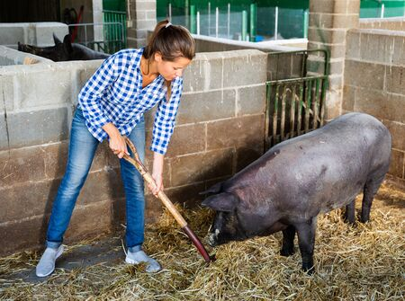 Woman farmer standing with rake in pigsty