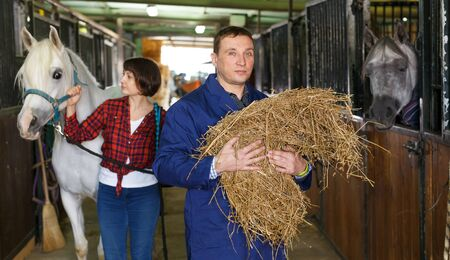 Man in working clothes feeding horse with hay at stable Фото со стока