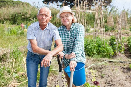 Elderly couple working in the garden at the farm Stockfoto