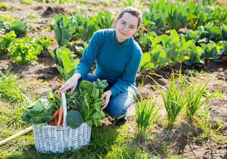 Portrait of young female gardener sitting with basket full of freshly harvested greens in vegetables garden Stock Photo