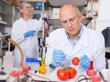Experienced biochemist checking fruits and vegetables for nitrates and pesticides in modern research laboratory