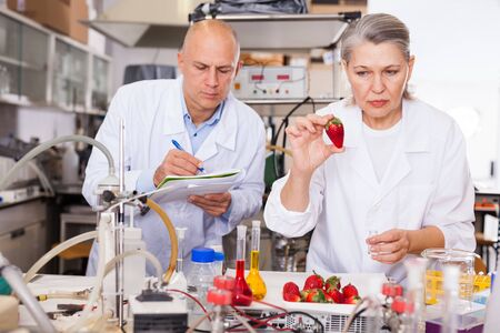 Scientific researching in laboratory. Two scientists taking notes while checking quality and purity of agricultural products Stok Fotoğraf - 133651385