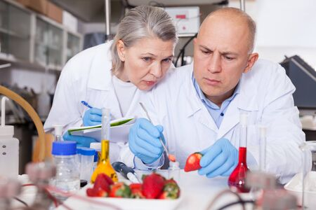Two professional genetic scientists working in laboratory, taking notes while performing experiments with genetically modified fruits and vegetables Stok Fotoğraf