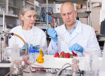 Two experienced biochemists checking fruits and vegetables for nitrates and pesticides in modern laboratory, recording experimental procedure and results Stok Fotoğraf