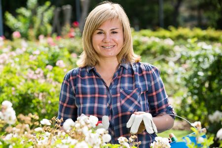 portrait of cheerful mature woman trimming plant with white flowers outdoors in garden Stock fotó