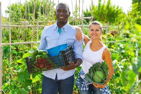 Happy family couple of gardeners holding  harvest of fresh vegetables in  garden Stock fotó