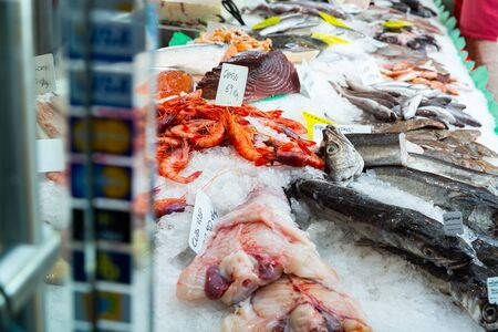 Icy fish showcase with diversity of fresh marine products on seafood market Zdjęcie Seryjne