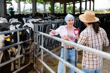 Young female and male proffesional farmers  talking near cow at  farm Archivio Fotografico - 133854514