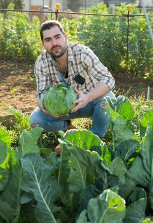 Portrait of young male worker holding harvest of cabbage at farm Archivio Fotografico - 133854519