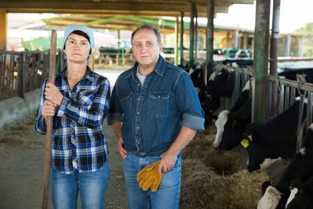 Portrait of couple farmers who are standing at the cow farm.