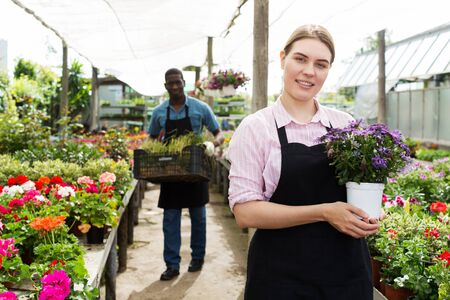 Portrait of florist woman working in sunny greenhouse full of flowers