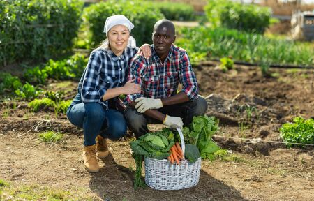 Friendly couple with a basket of vegetables in the garden