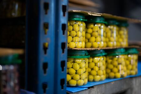 Rows of glass jars of green unpitted olives in brine. Artisanal producing of organic snack