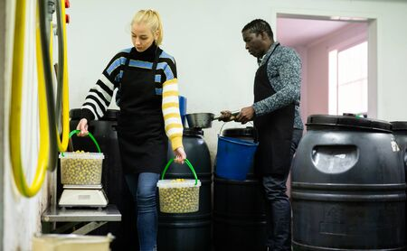 Multiracial couple engaged in producing of pickled olives, weighing plastic buckets filled of finished products