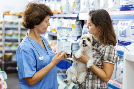 Cheery mature woman veterinary consulting female client with cute havanese about pet dry feed in clinic