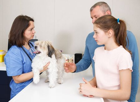 Professional woman veterinarian consulting anxious father and daughter with small dog in clinic Stockfoto
