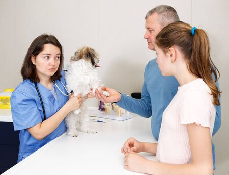 Professional woman veterinarian consulting anxious father and daughter with small dog in clinic Фото со стока