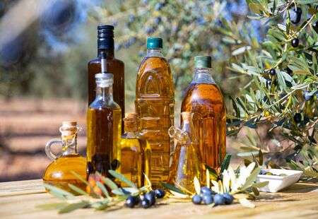 Glass bottles and carafes with fresh olive oil on wooden table on background with olive grove Reklamní fotografie