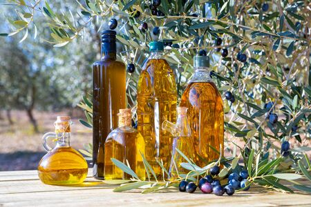 Bottles with olive oil and olive branch on a wooden table on a background of nature