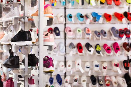 Collection of different sneakers on shelves in sports goods store