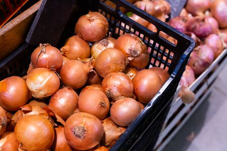 Pile of different onion varieties on market counter