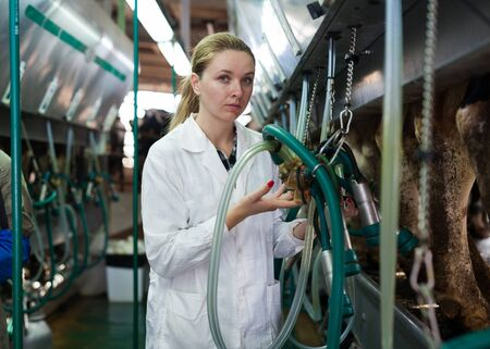 Portrait of young woman in white coat working with milking line on farm