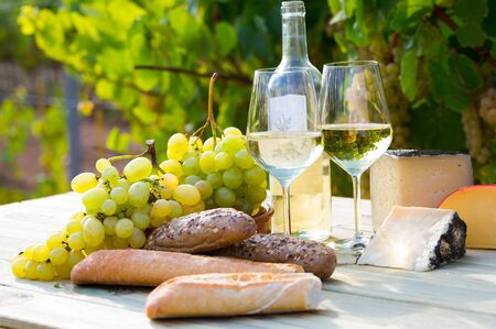 Still life with wine, cheese, grapes and fresh bread on table in vineyards at table