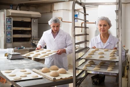 Two bakers working in bakery, preparing shaped raw dough for proofing before baking