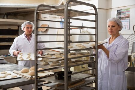 Mature woman baker placing tray with formed raw dough on stainless steel trolley for proofing Imagens