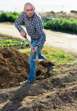 Middle-aged man scattering peat shovel on garden beds