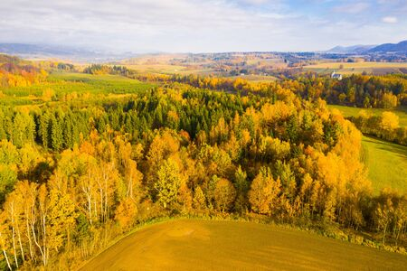 Aerial view of the autumn forest and hills in the Czech Republic 版權商用圖片
