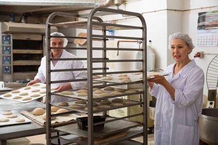 Older female baker placing tray with formed raw dough on stainless steel trolley for proofing