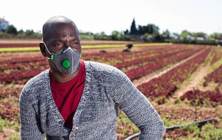 Portrait of african-american farmer in protective mask on the field