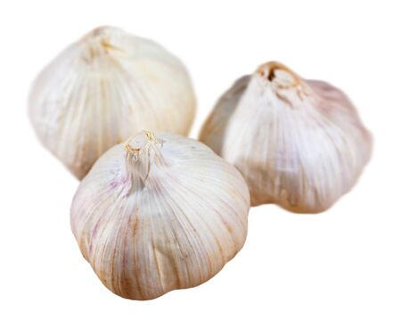 Raw organic whole bulbs of garlic. Isolated over white background