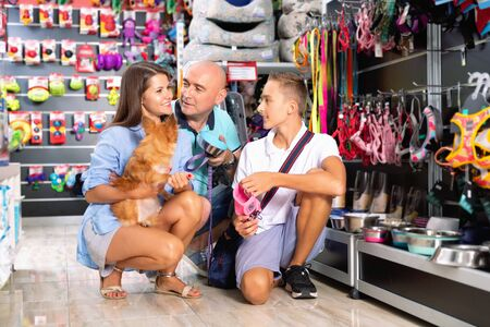 Tweenage boy and his glad positive  parents looking for supplies for little dog in petshop Banque d'images