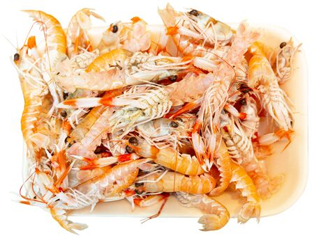 Closeup of fresh chilled langoustines on crushed ice. Isolated over white background Banque d'images