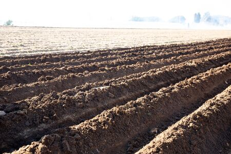 Closeup of plowed soil with furrows. Spring agricultural work, preparation for seeding
