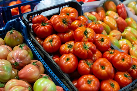 Showcase of greengrocery with fresh ripe tomatoes. Healthy organic products