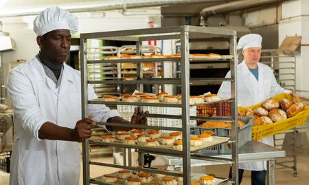 Experienced African American baker carrying formed products from raw dough on tray rack trolley in small bakery