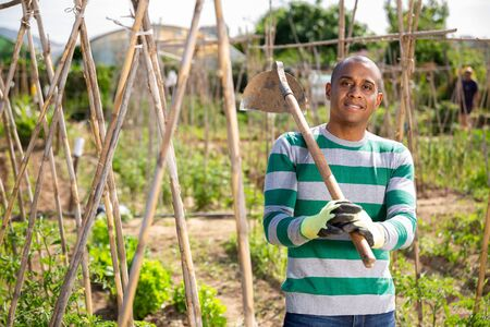 Portrait of smiling african american amateur gardener standing with hoe on his vegetable garden in spring day