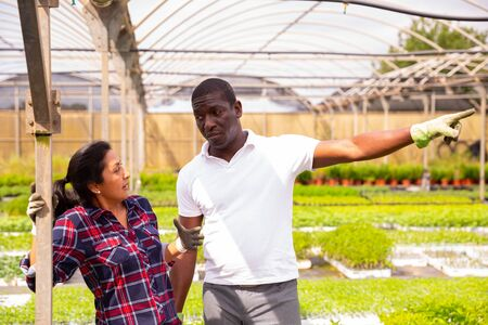 Outraged african american man owner of greenhouse expressing dissatisfaction with work of hispanic female worker