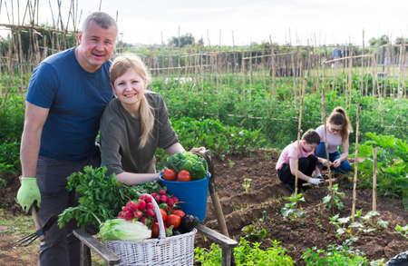 Happy couple with harvested vegetables in kitchen garden Reklamní fotografie