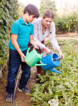 Little boy with mother watering melon seedlings with watering pot