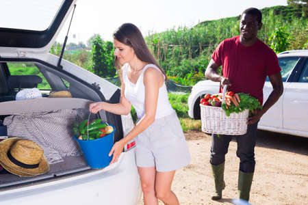 Married couple puts basket and bucket of vegetables in the trunk of car
