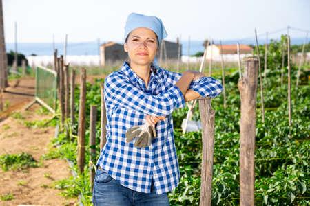Female amateur gardener on green vegetable garden
