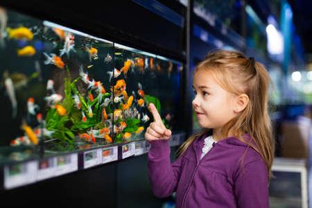 Girl looking at aquarium fish in pet shop