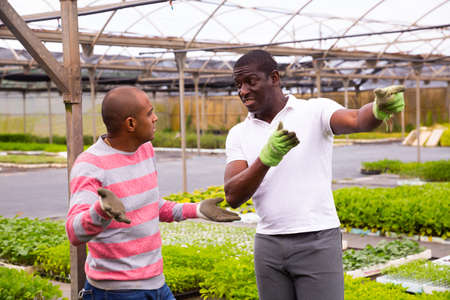 African and Latino men garden workers berating