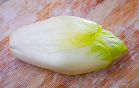 Fresh Belgian endive head on wooden surface