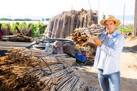 Gardener stacking bundles of bamboo poles on backyard